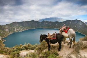 Andean Cultural Immersion