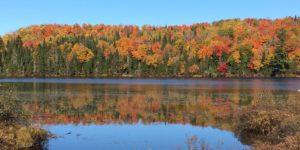 Wonders of Autumn in Québec