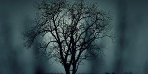 The Spookier Side of La Belle Province