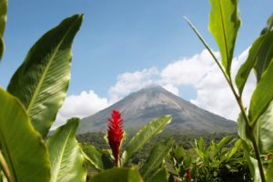 Costa Rica STEM – Biology & Ecology Tour